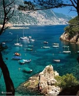 De kuststrook van de Costa Brava is 200 kilometer lang. Er is dus altijd wel een plekje te vinden om te genieten van de zee.