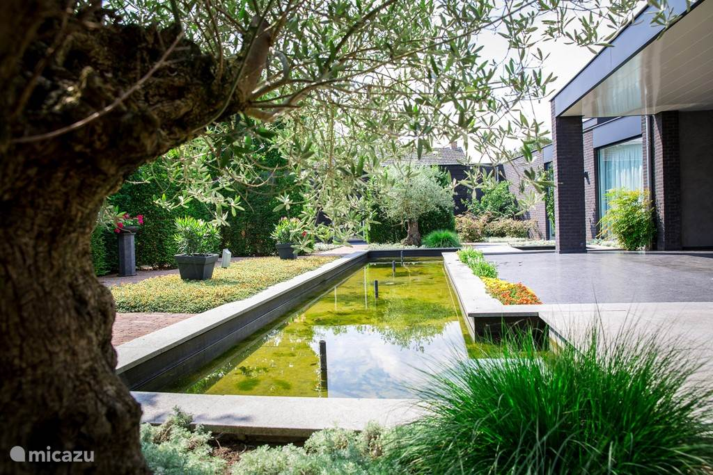 In de tuin met vijver kunt u heerlijk ontspannen