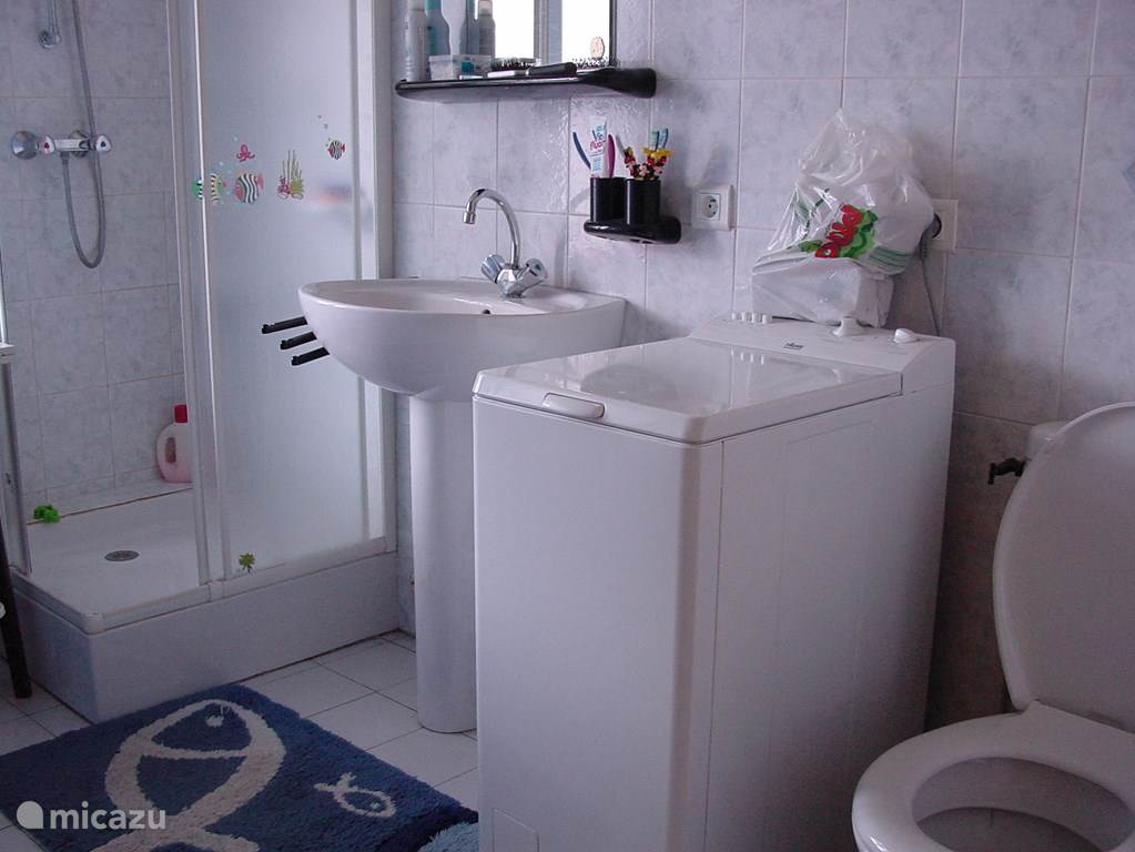 Downstairs bathroom with shower, sink, toilet and washing machine.