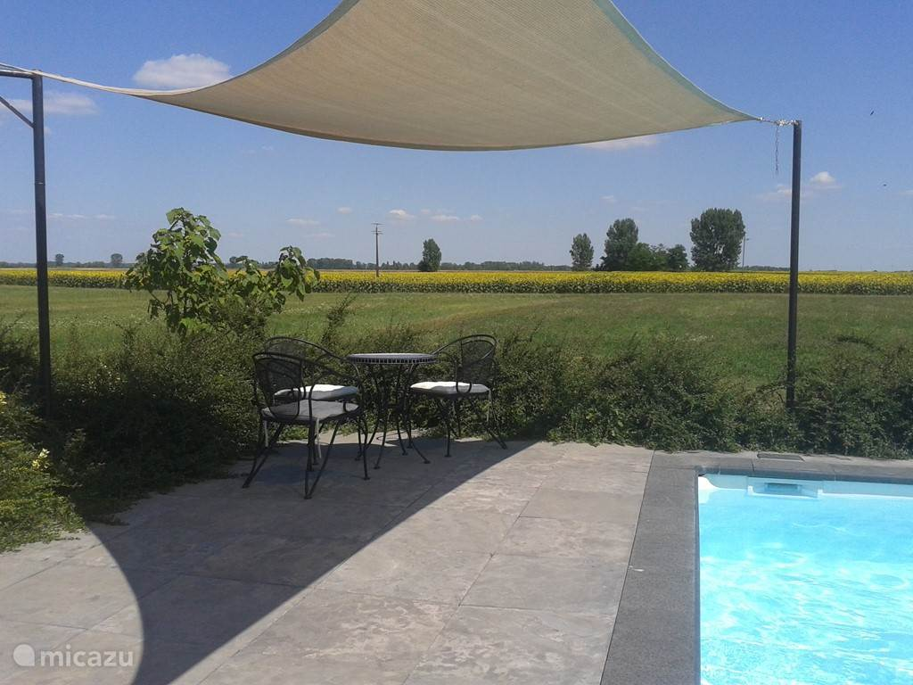 Poolside terrace overlooking the fields