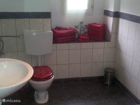In the former geitenhok is the bathroom with shower, washing machine and plenty badhanddoeken and hair dryer