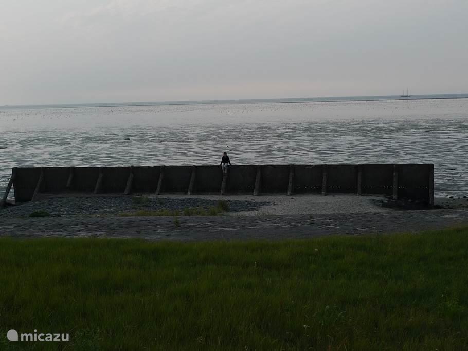 De omgeving, de Waddenzee