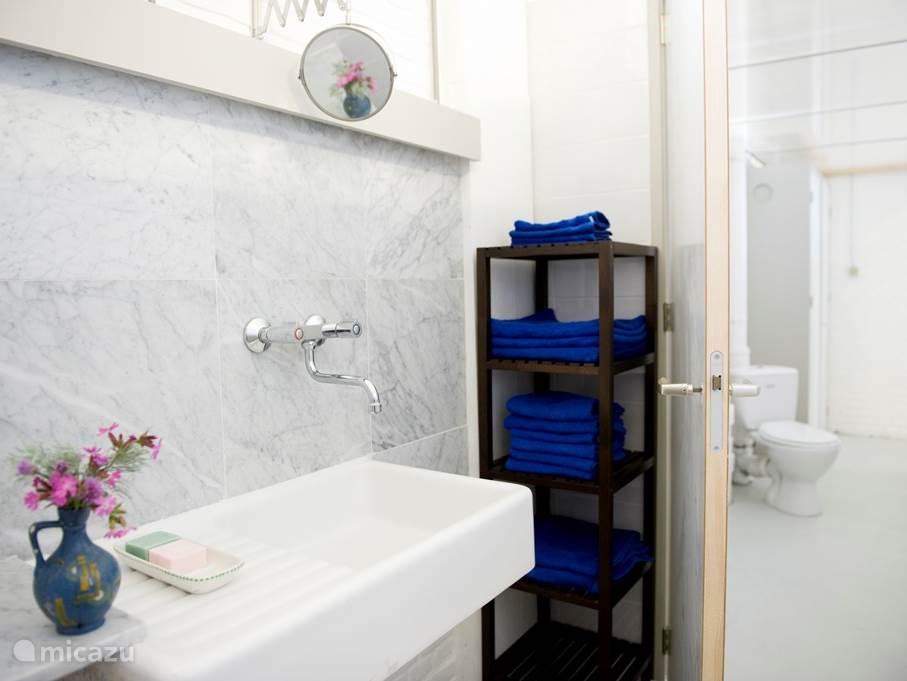 De badkamer, douche en toilet