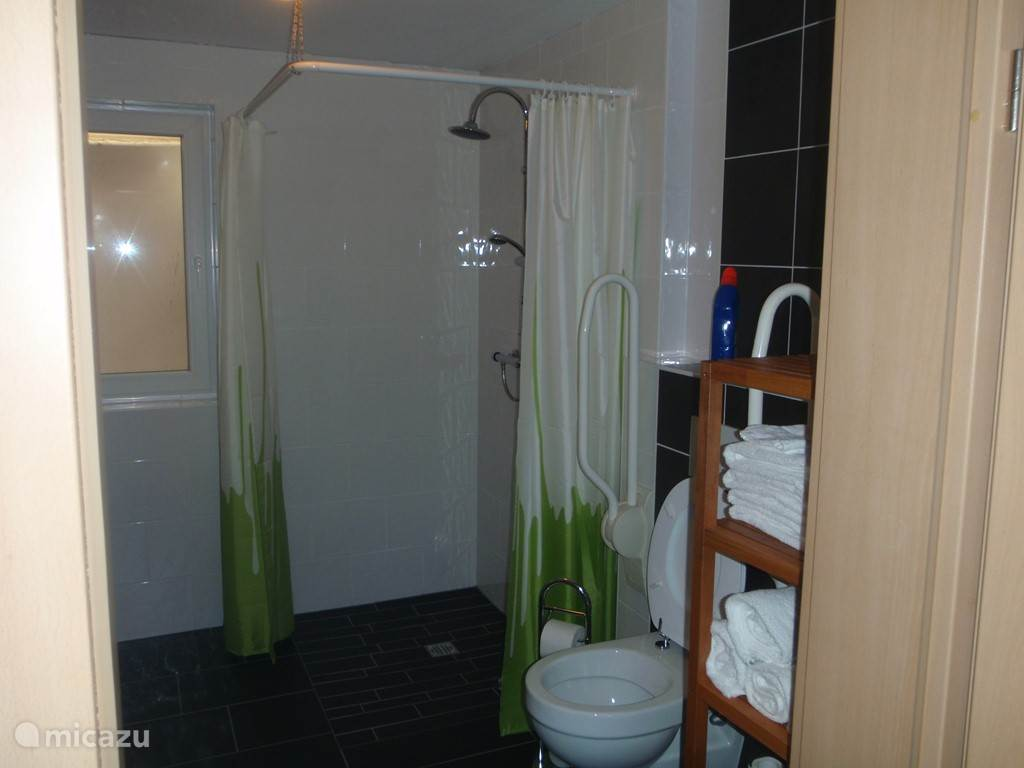 badkamer met verhoogd toilet met beugels en een vlakke en ruime douche.