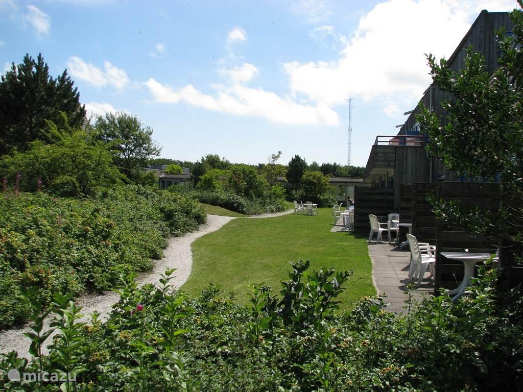 Dit is het uitzicht vanuit de kamer. Vanaf het terras stapt u het groen in.