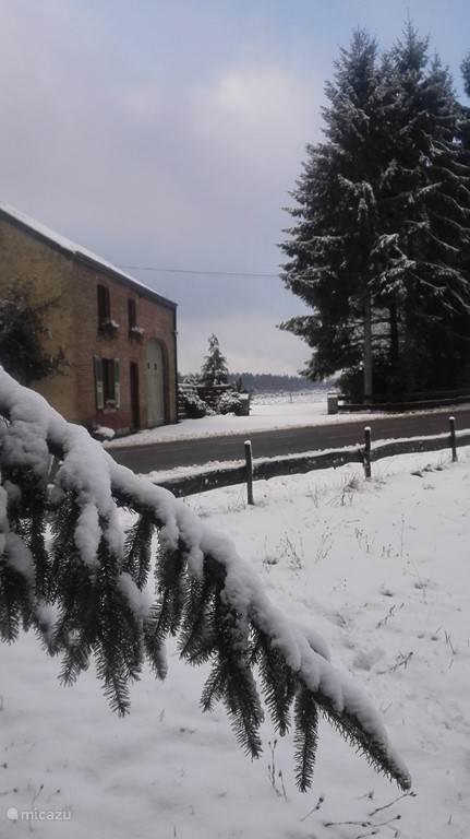 winterzicht
