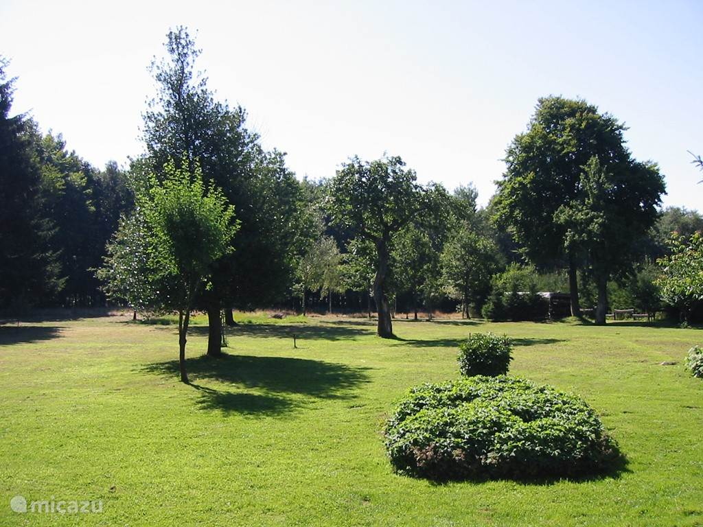 Large garden seen from the house