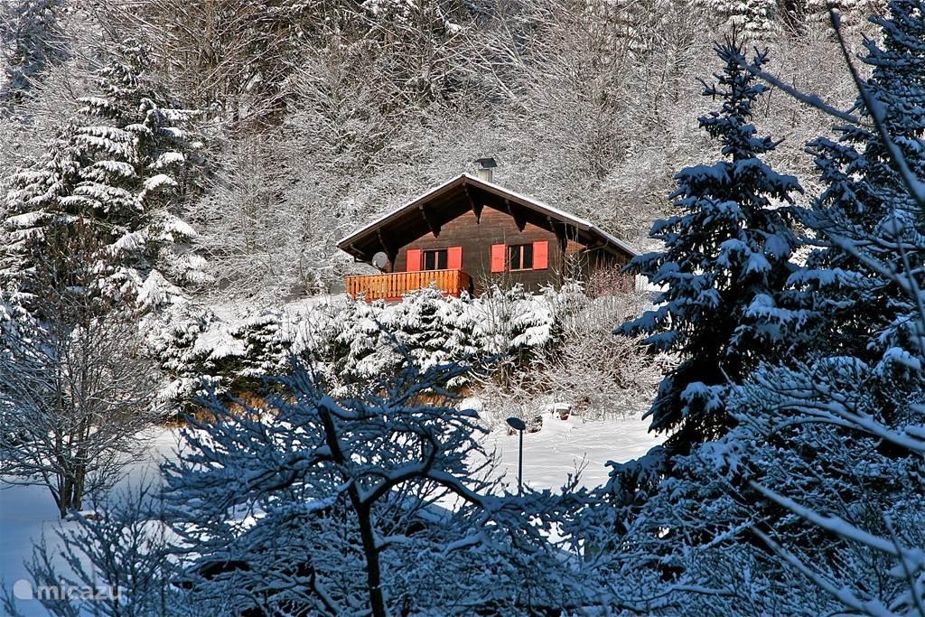Vakantiehuis Zwitserland, Wallis, Torgon chalet Chalet Mignon vrijstaand & zonnig