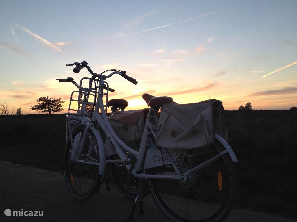 Met de fiets van de zonsondergang genieten op de Ermelose Heide.