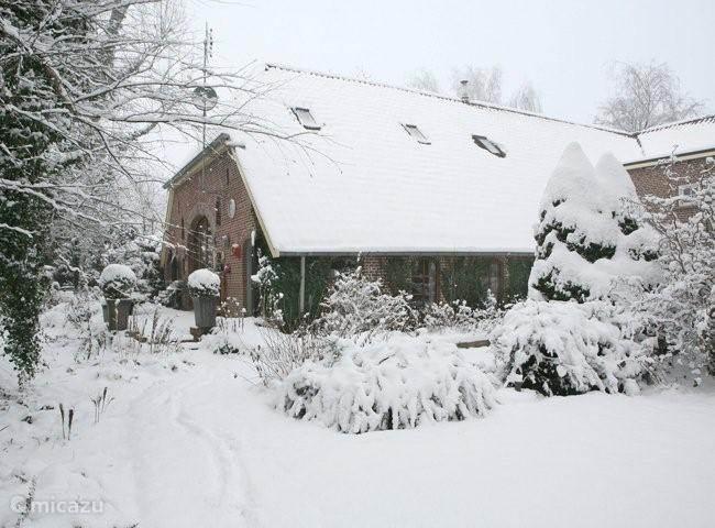 Het vakantiehuis in winterse sferen. Sneeuwpoppen maken in de tuin en met de slee de besneeuwde bossen in.