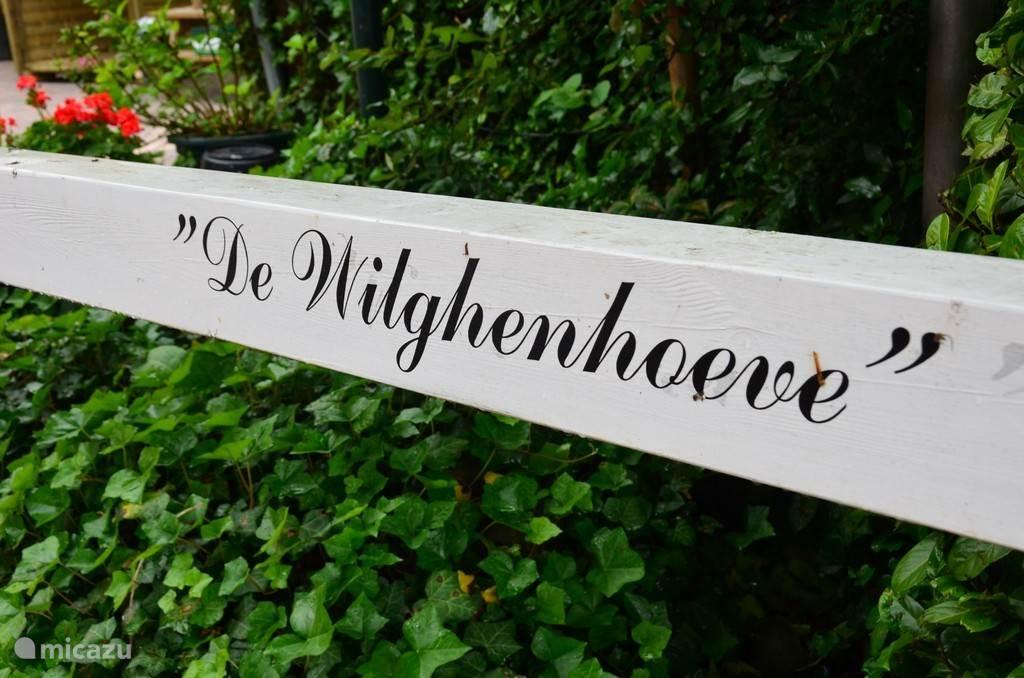 Welkom op de Wilghenhoeve in Ruurlo.