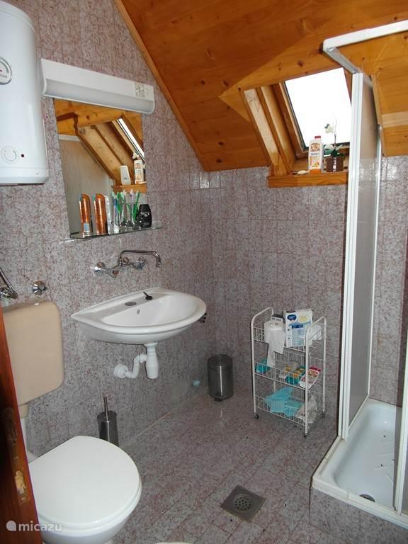 De douche met wasbak en toilet