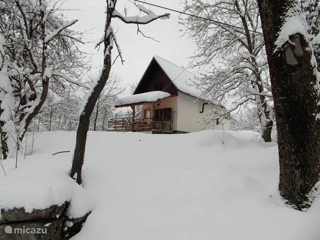 In het winterkleed.