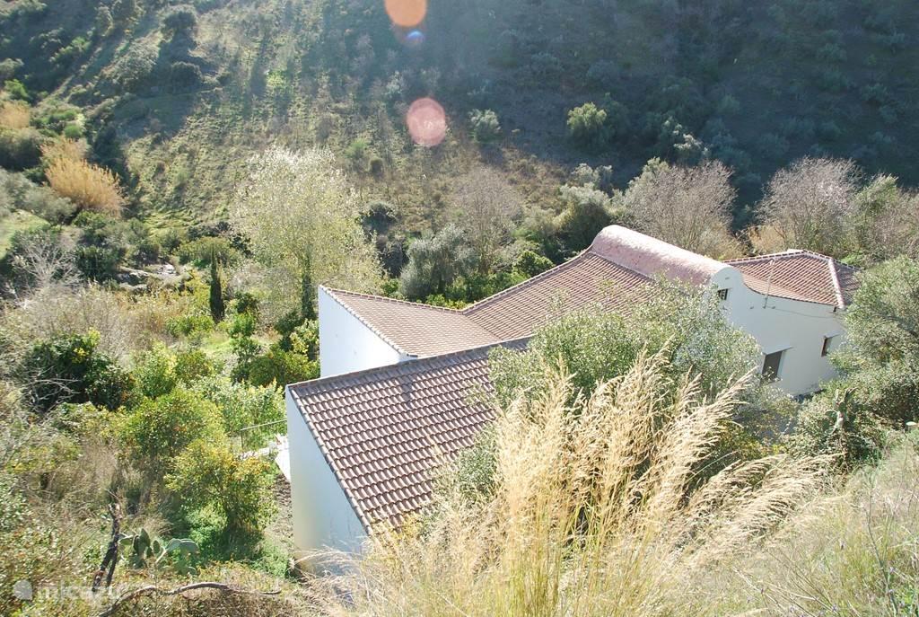 Het huis ligt in een vallei vol sinaasappelbomen, je wordt volledig omringd door de natuur.