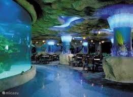 Aquarium MALLORCA