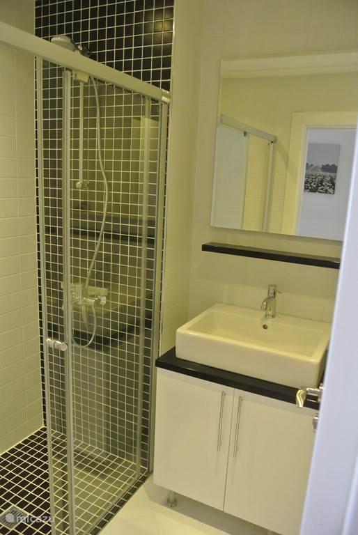 Hier ziet u de master badkamer.