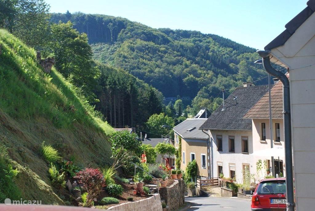 Vakantiehuis Duitsland, Eifel, Waxweiler vakantiehuis Ons Waxweilerhuis