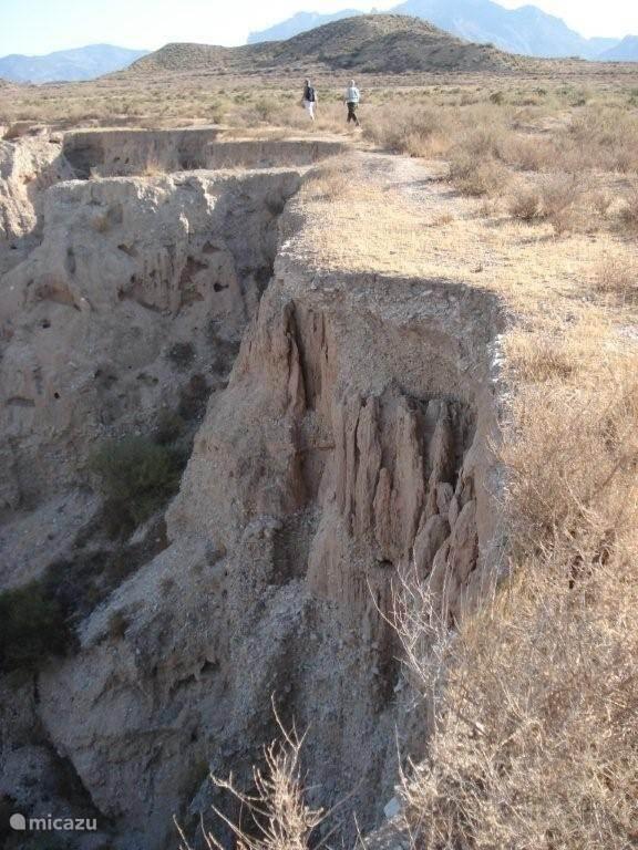 Dit is een foto van het natuurgebied waarop wordt uitgekeken vanuit de villa.
