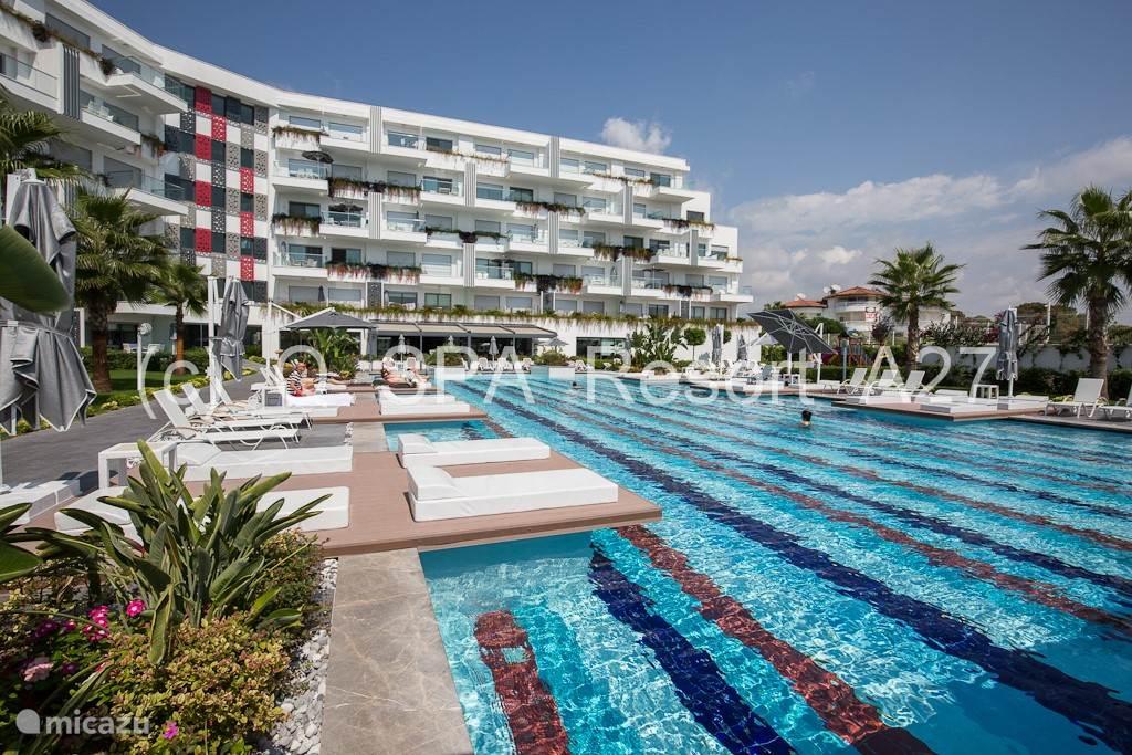 Bij het zwembad staan er comfortabele ligbedden en parasols die gebruikt kunnen worden om te zonnebaden.