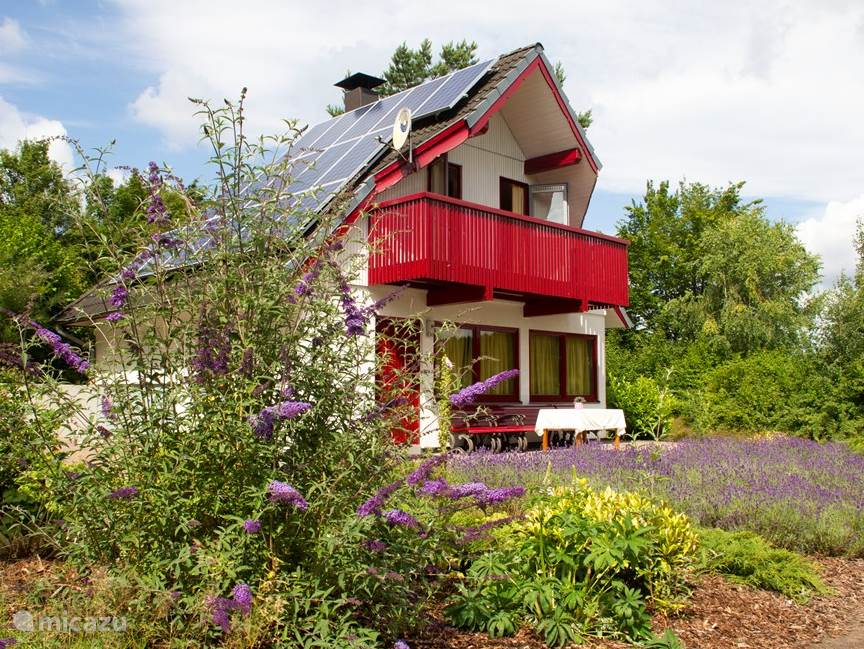 Overzicht vakantiehuis met groot terras (100 m2) en tuin met veel lavendel.