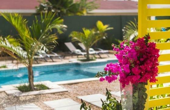Vacation rental Aruba, North, North Apartment Bubali Bliss