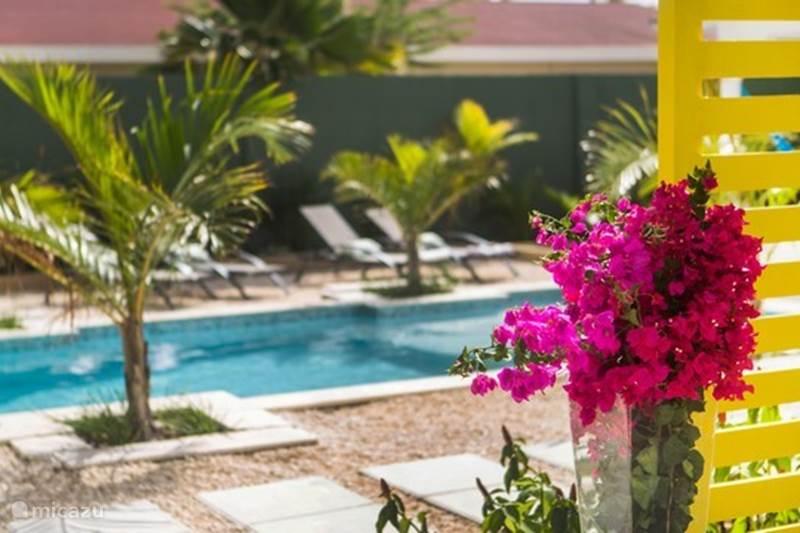 Ferienwohnung Aruba, Aruba Nord, Nord Appartement Bubali Bliss