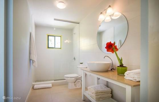 Bathroom with robust vanity, large shower, toilet, handy dispensers for hand soap, shampoo and shower gel, towel package and large mirror.