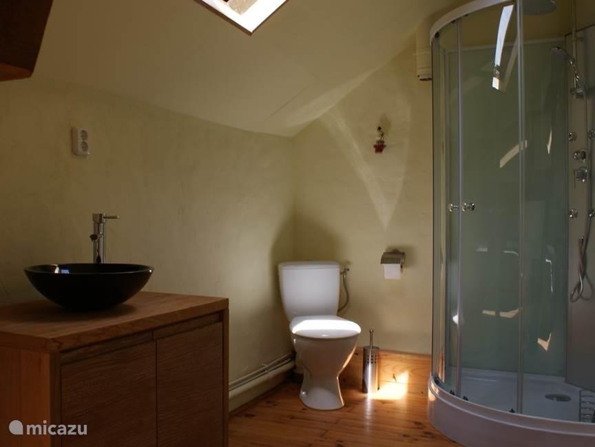 Badkamer op de eerste etage (luxe douche met 3 keuzemogelijkheden)