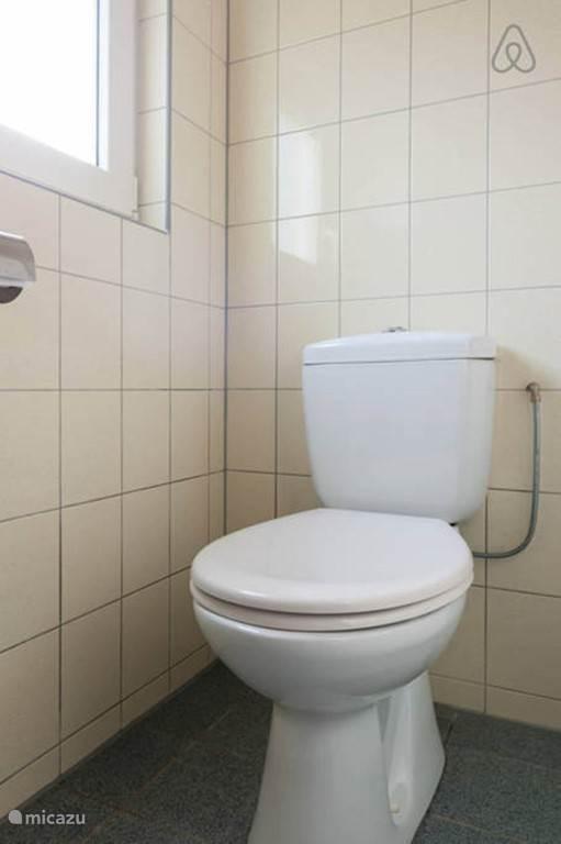 Badkamer met douche, toilet en wastafel