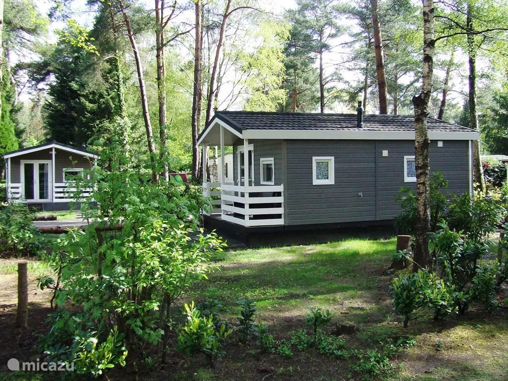 Er zijn 3 HotelCotta chalets te reserveren in deze bosrijke locatie.