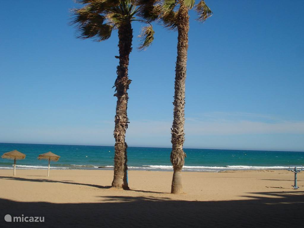 het strand van la mata