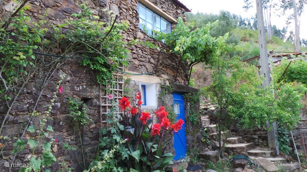 Ferienwohnung Portugal, Beiras, Figueiro dos Vinhos Gîte / Hütte Vivenda Festina Lente