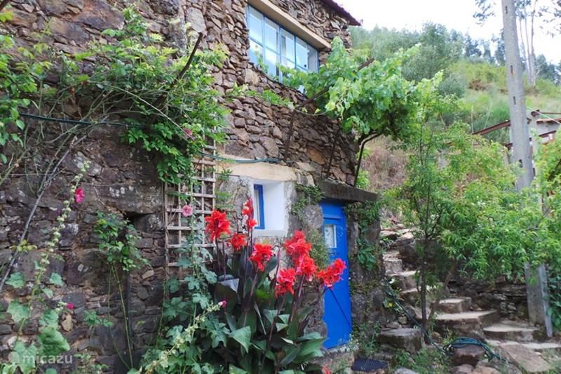 Vakantiehuis Portugal, Beiras, Figueiro dos Vinhos Gîte / Cottage Vivenda Festina Lente vakantiehuis