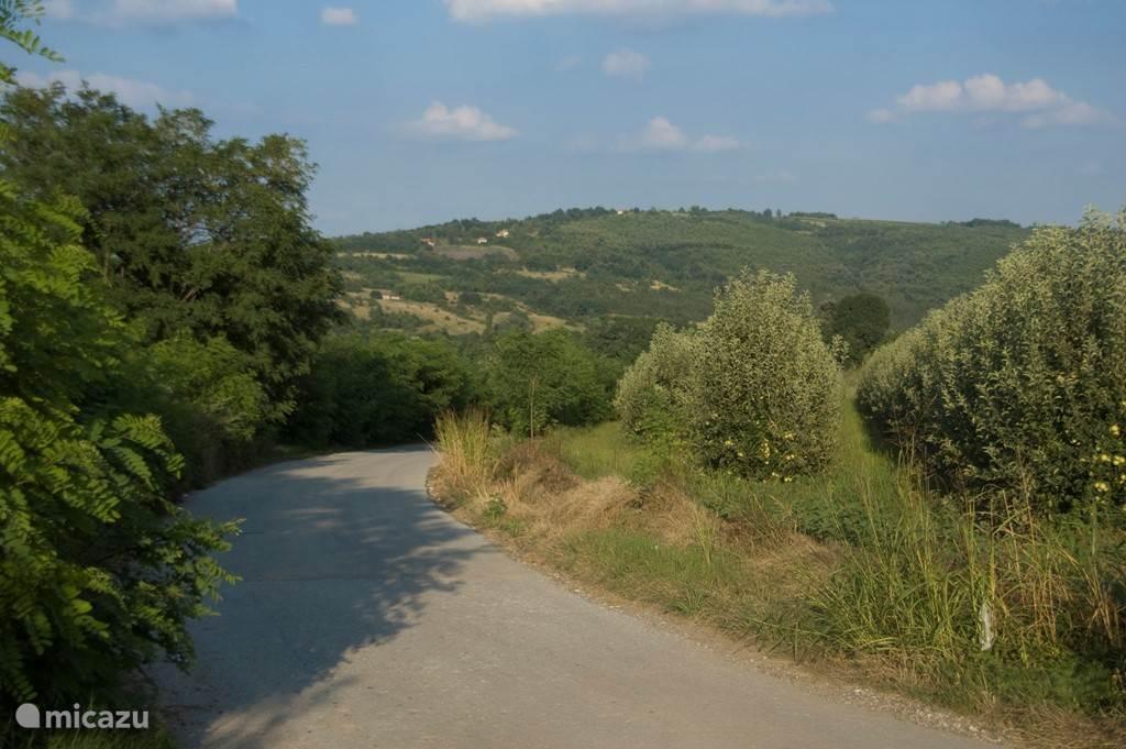 ...zelfs de allerkleinste wegen zijn mooi geasfalteerd in de streek... leuk om te fietsen en te wandelen...