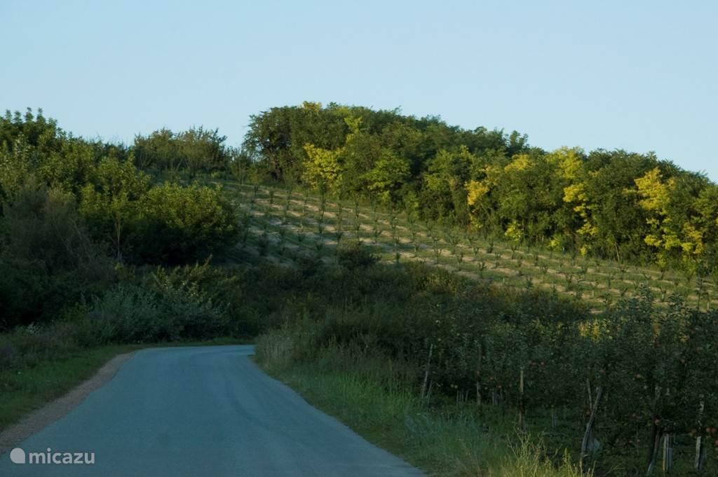 's Avonds nog even fietsen of wandelen: hier zijn we op 800 meter van Villa Vinca..