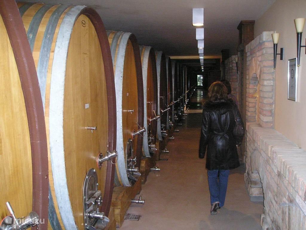 Een bezoekje aan de befaamde wijnkelder Aleksandrovic. Men kan hier gratis een rondleiding krijgen en wijn proeven... witte wijnen, rode wijnen, champagne...klasse! Wij bevinden ons in hetzelfde straatje als Villa Vinca, op 1800 meter.