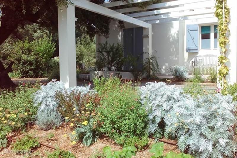 villa villa le pavillon in bize minervois languedoc. Black Bedroom Furniture Sets. Home Design Ideas