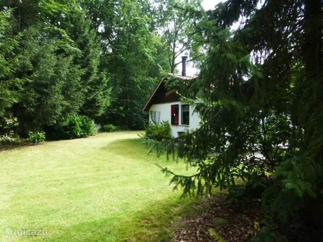 Naast het bosperceel en rondom de bungalow is veel ruimte.