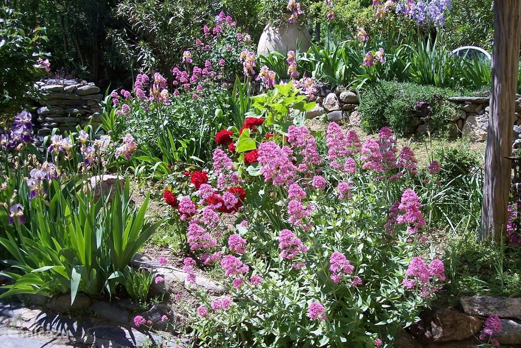 Even een blik in de tuin