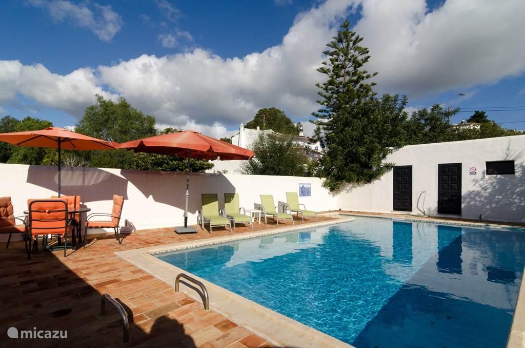 In de tuin ligt het heerlijke zwembad  8x4 meter