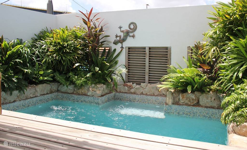 Plunge pool 2.5x3M.