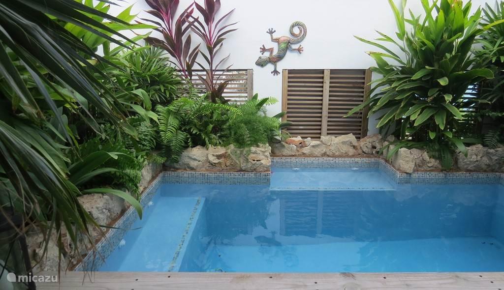 Privé Plunge Pool, afmetingen: 2.5x3.5 mtr.