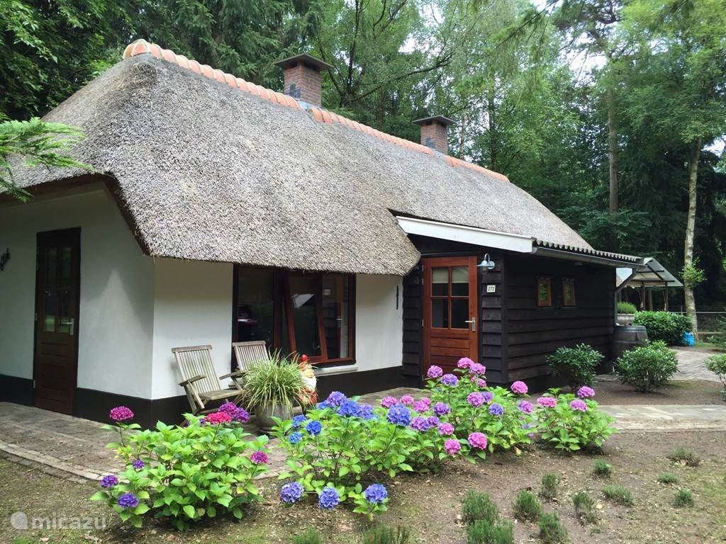 Geheel gerenoveerd boerderijtje van alle gemakken voorzien. Met sauna en bubbelbad.
