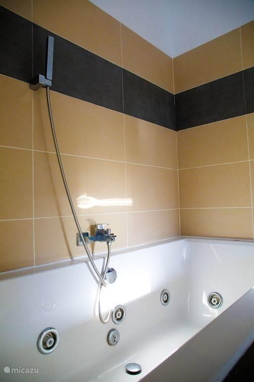 badkamer met bubbelbad  aparte douche, toilet en wastafel
