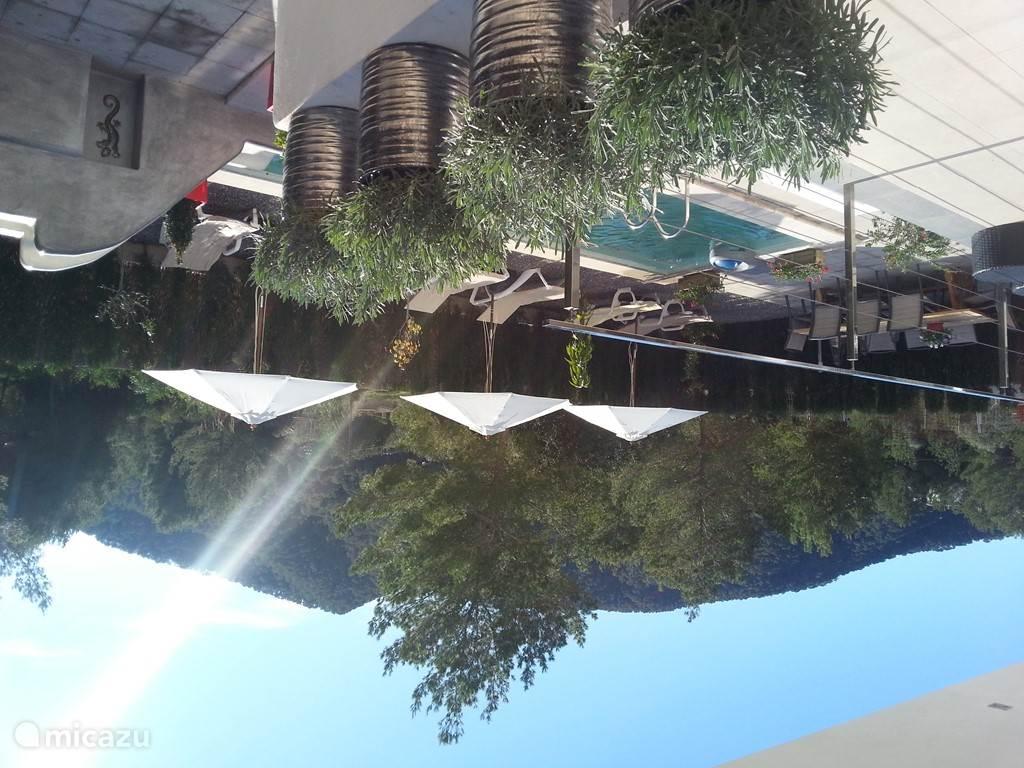vanaf boventerras uitzicht op zwembad en terras