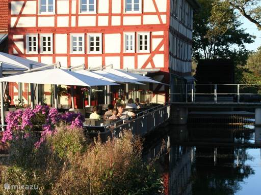 Je kan in Frankenau op diverse plekken eten. Wat echt speciaal is de walkemuhle in Frankenberg. Dit restaurant is zeer zeker aan te bevelen.