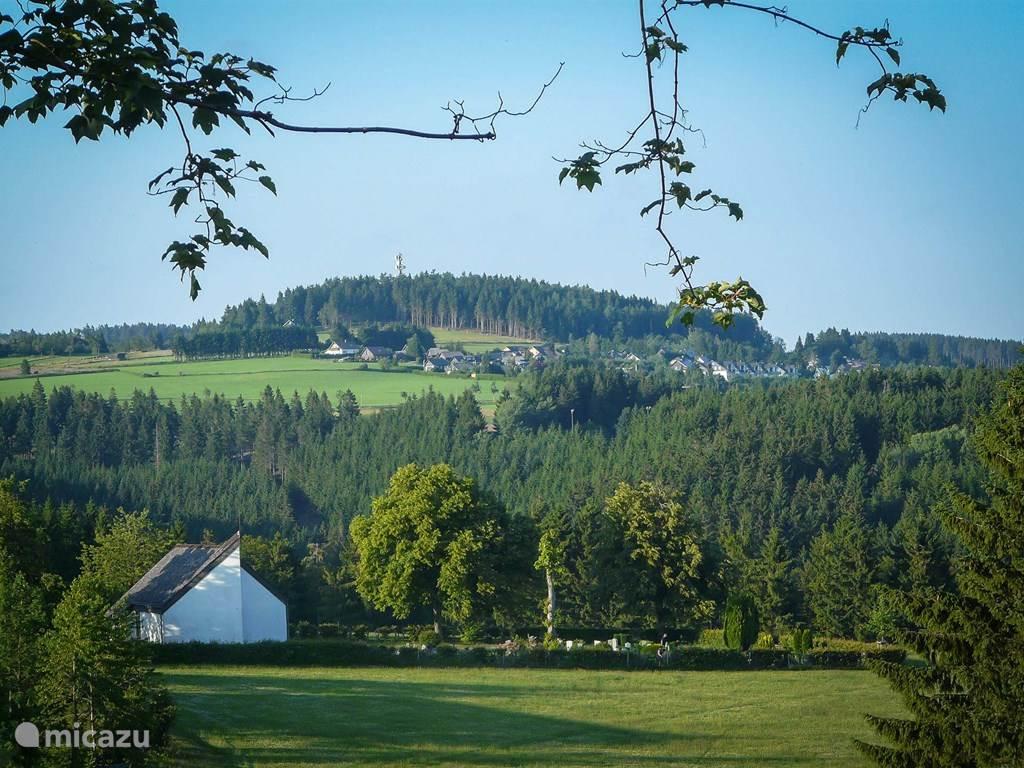 Het prachtige uitzicht vanaf de woonkamer over de Wiese achter het huis