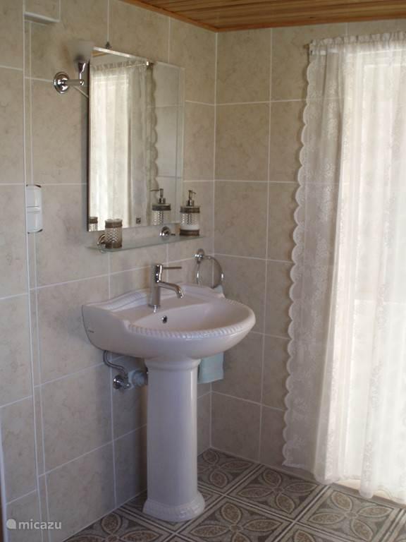 Badkamer met ruime douche, wastafel, toilet, wasmachine, strijkruimte...