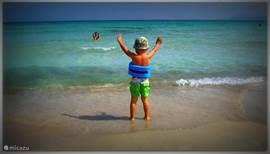 Het strand van Playa d´Alcúdia is paradijselijk mooi!