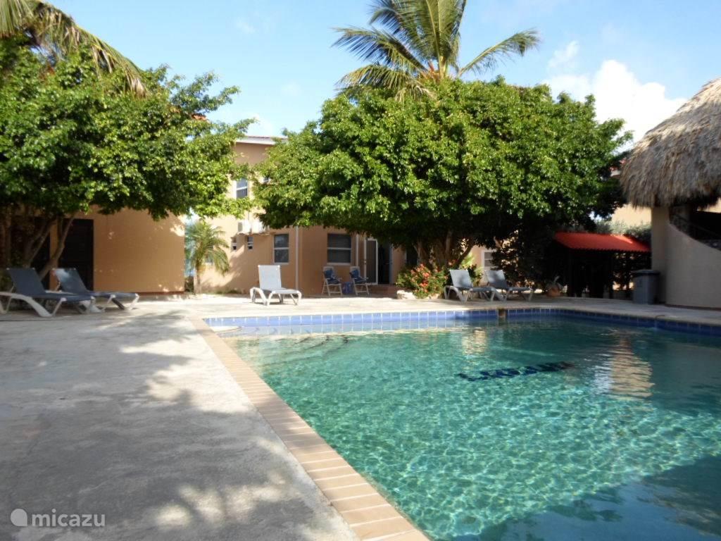 Het zwembad met op de achtergrond Villa Niba